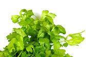 Fresh parsley isolated — Stock Photo