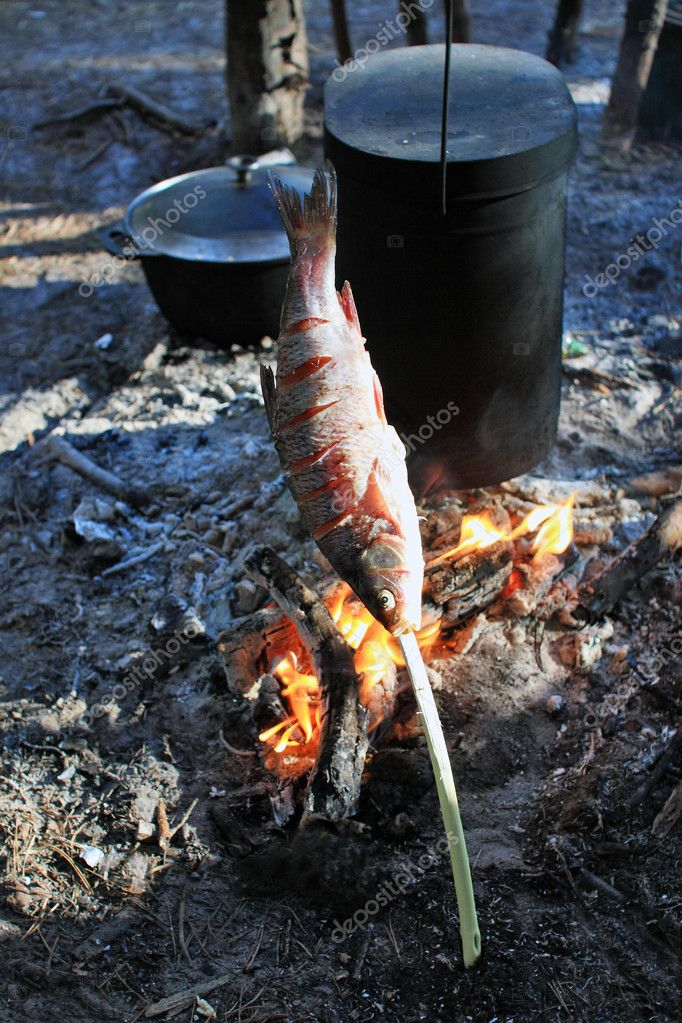 Chops bake fish on an open fire stock photo krugloff for Fish on fire