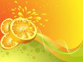 Orange citrus fruit. Vector illustration — Stock Vector
