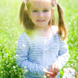 Cute little girl on the meadow — Stock Photo #5681862