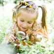 Little girl with magnifying glass looks at flower - Stock Photo