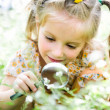Little girl with magnifying glass looks at flower — Photo