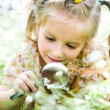 Little girl with magnifying glass looks at flower — Stock Photo