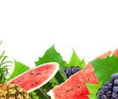 Colorido saudáveis frutas frescas — Foto Stock