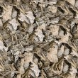 Dried leaves seamless background - Stock Photo