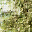 Grungy wall. - Stock Photo
