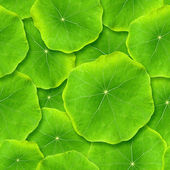 Seamlessly green leafs. — Stock Photo
