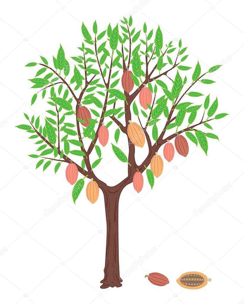 how to find all leaves of binary tree