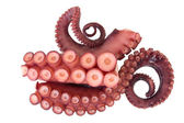 Tentacles of octopus — Stock Photo