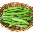 Broad beans, horse beans,fava beans — Stock Photo