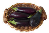 Aubergines,eggplants in basket — Stock Photo