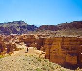 Canyon e homem — Foto Stock