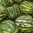 Watermelon — Stock Photo #6157197