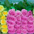 Roses as background — Stockfoto