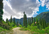 山景观横贯伊犁阿拉套 — 图库照片