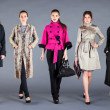 Stock Photo: Five girls. Autumn winter collection lady's clothes