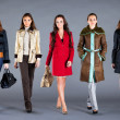 Five girls. Autumn winter collection lady's clothes — Stockfoto #6397313