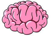 Illustration human brain in profile — Stock Vector