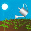 Sprinkling can waters plant solar daytime — Stock Photo