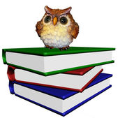 Pile of the books with wise owl — Stock Photo