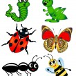 Set insect is insulated on white — Stock Vector