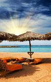 Wonderful tropical beach in the Egypt. — Stockfoto