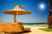 Palm, parasol and sea against blue sky. — Stock Photo