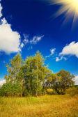Wonderful autumnal landscape. — Stock Photo