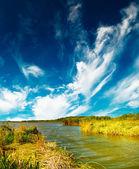 Malé jezero a modrá obloha na podzim. — Stock fotografie