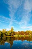 Wonderful view of autumn lake. — Stock Photo