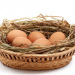 Chicken eggs and hay in  the brown basket . - Stock Photo