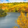 Nice autumnal landscape. — Stock Photo