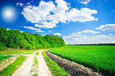 Splendid cumulus clouds and spring field. — Stock Photo