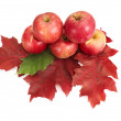 Autumnal fruit composition. — Stock Photo #6330463