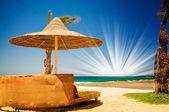 Krásná tropická pláž v egypt. — Stock fotografie