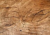 Brown old cracked board. — Stock Photo