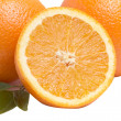 Oranges on a white background. — Stockfoto