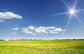 View of mown field of wheat and amazing blue sky with white clou — Stock Photo