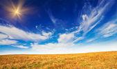 Wonderful field by autumn. — Stock Photo