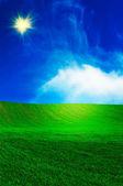 Wonderful,nice field by spring. — Stock Photo