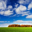 Wonderful countryside by  later autumn. — Stock Photo