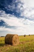 Field, bales and amazing blue sky with white clouds. — Stock Photo