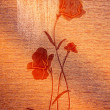 Classy poppies on the canvas. — 图库照片