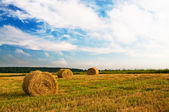 Haystacks and stubble by summertime. — Stock Photo