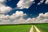 Cielo azul encima de primavera. — Foto de Stock