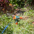 Foto de Stock  : Watering the Lawn with Sprinkler