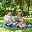 Family having picnic in park — Stock Photo #6559258