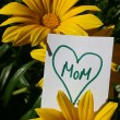 Happy Mothers Day — Stock Photo #5476734
