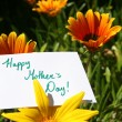 happy mothers day — Stock Photo