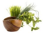 Comida sana verde — Foto de Stock